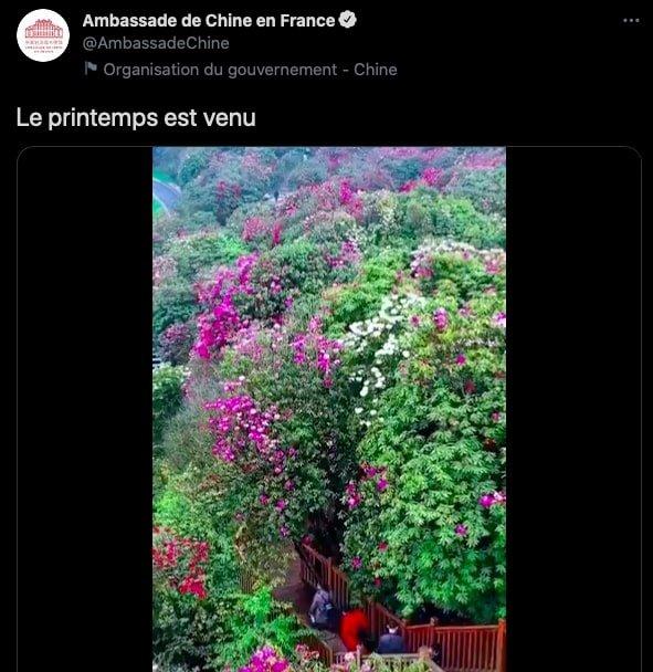 pessi twitter ambassade de chine