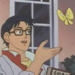 meme papillon