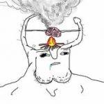 meme wojak débile cerveau
