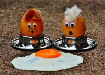 Comment savoir si des œufs sont encore bons ?